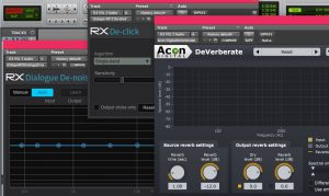 Noise reduction plugins in the Izotope RX range and Acon Digital's DeVerberate. Used in editing podcasts